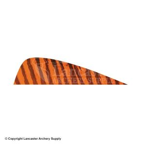 feather-3each-barred-39286